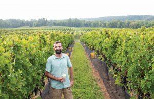 Stonetower vineyards