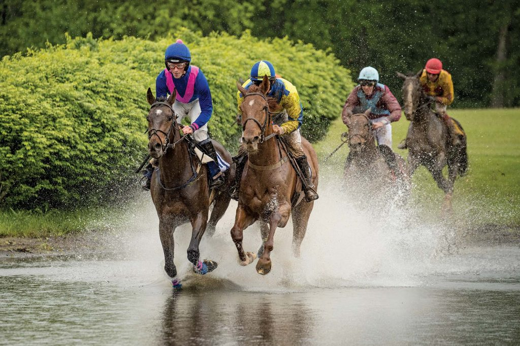Virginia Gold Cup, Image: © Anthony Gibson