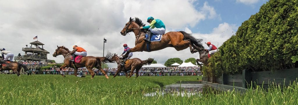 Horses jumping in the gold cup