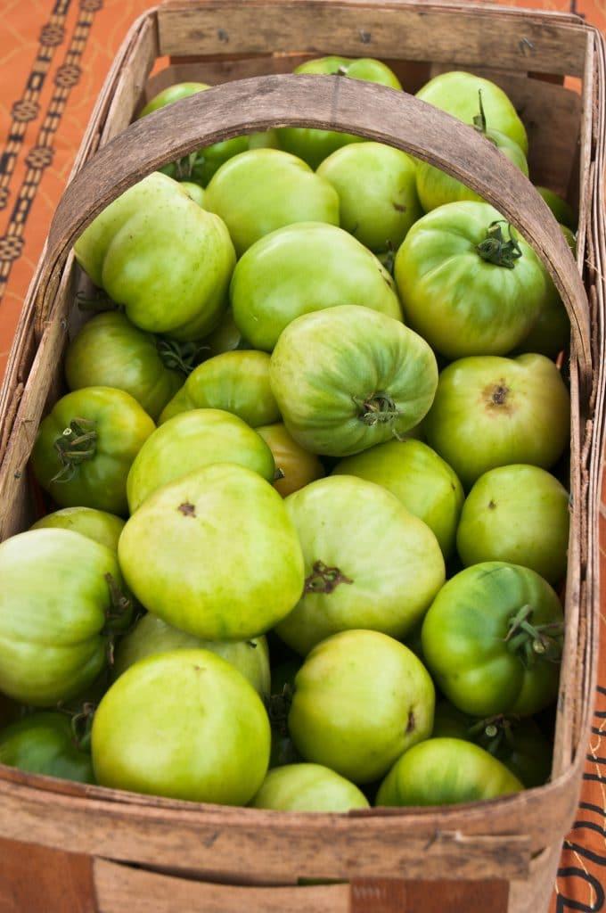 Green tomatoes in the wicker basket