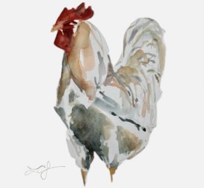 Chicken drawing