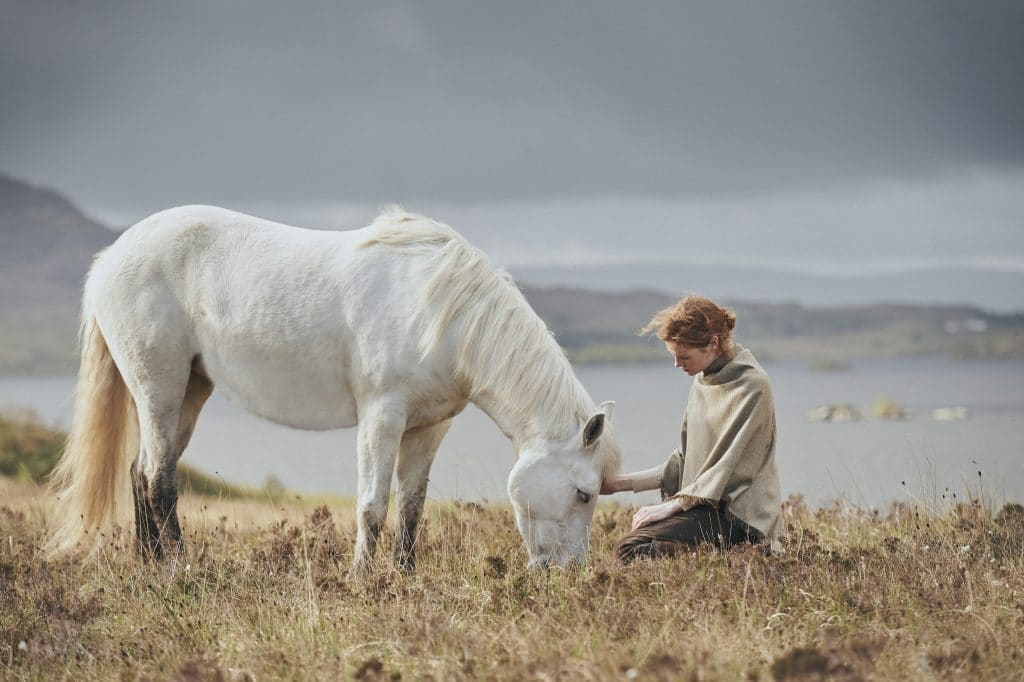 Hazlewood Sable Horse