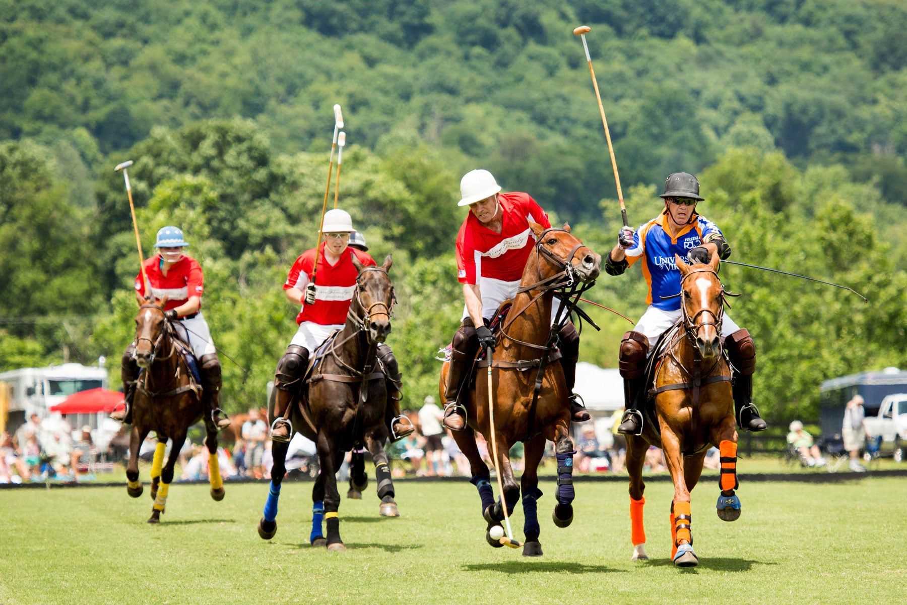 Polo match at King Family Vineyards