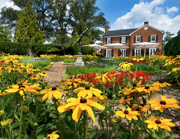 Flowers at Museum of the Shenandoah Valley