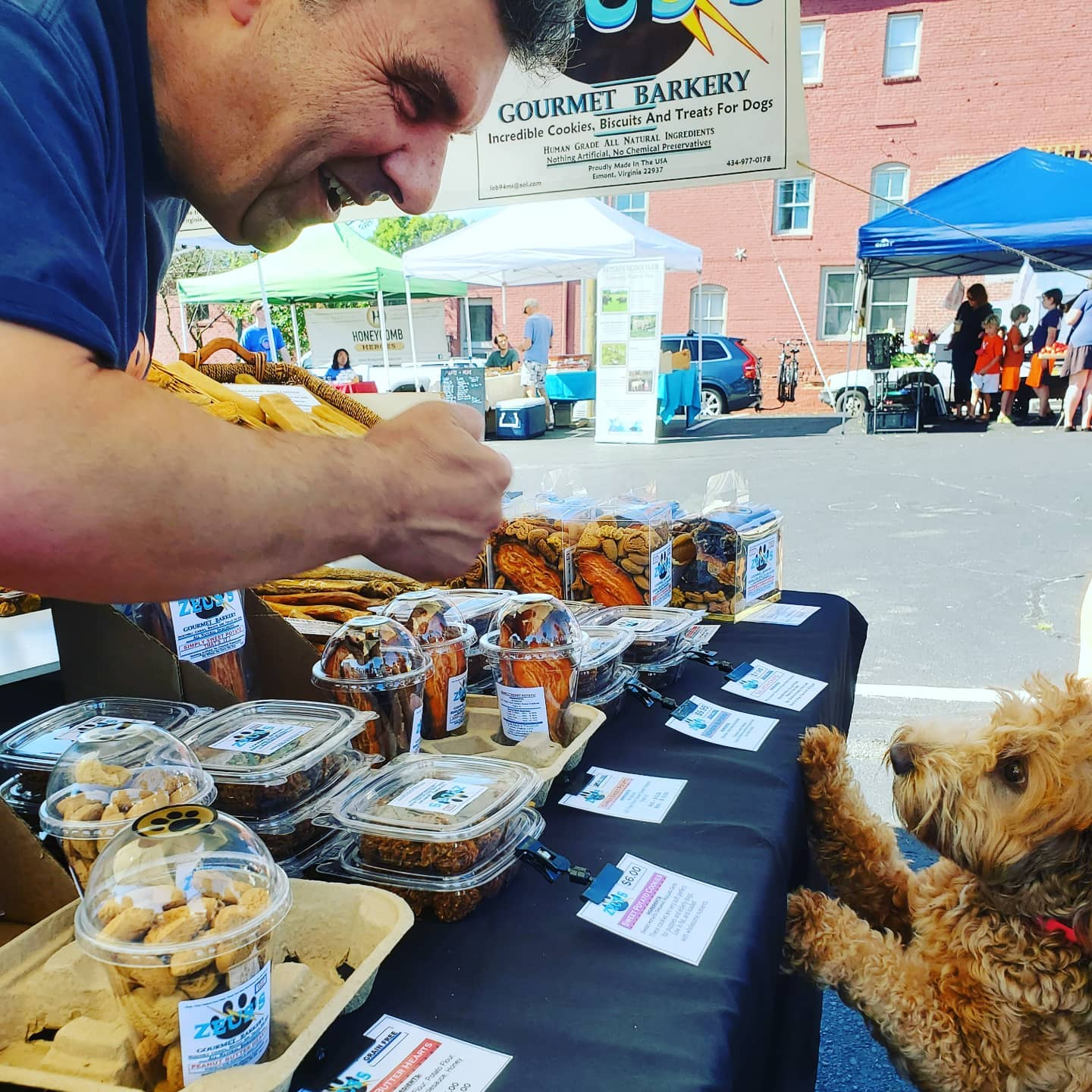 Dog getting a treat at City Market