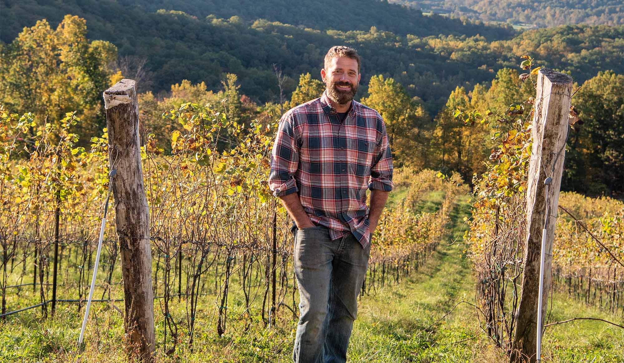 Ankida Ridge Vineyards, © Image R.L. Johnson for Wine & Country Life