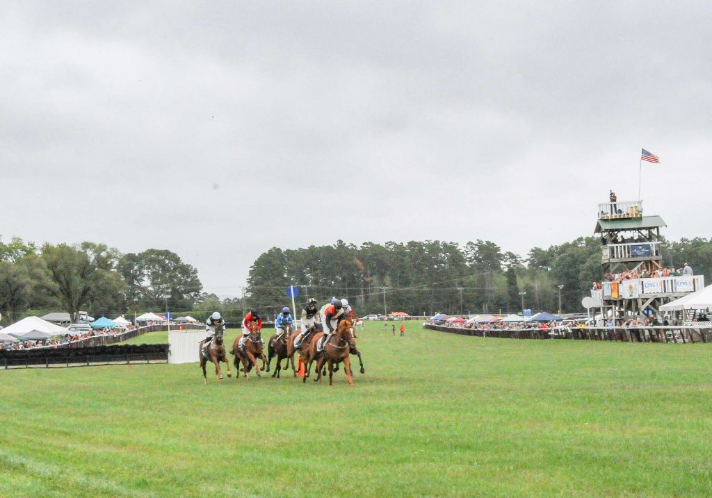 Horses racing on the track at Foxfield races