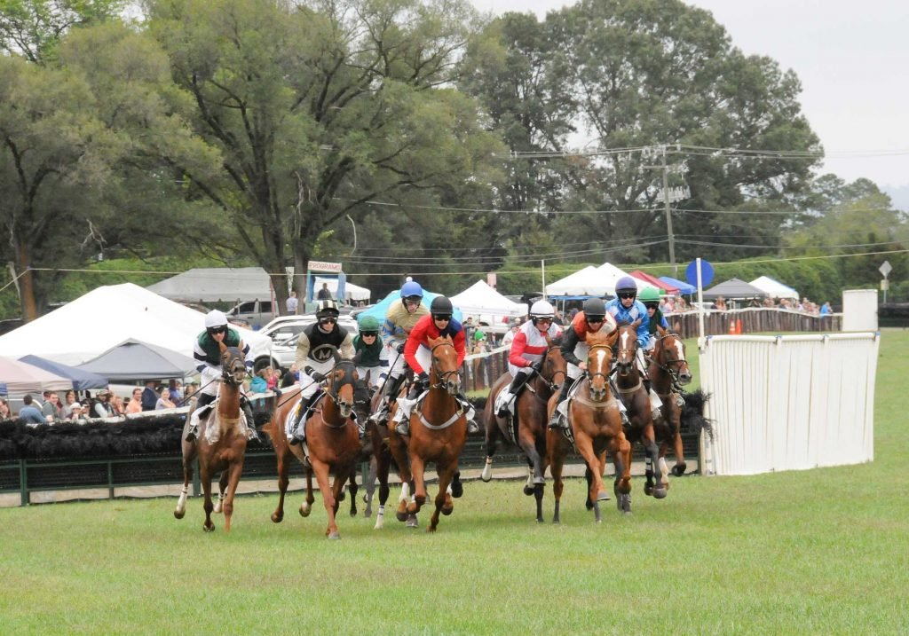 Charlottesville horse racing at the Foxfield races