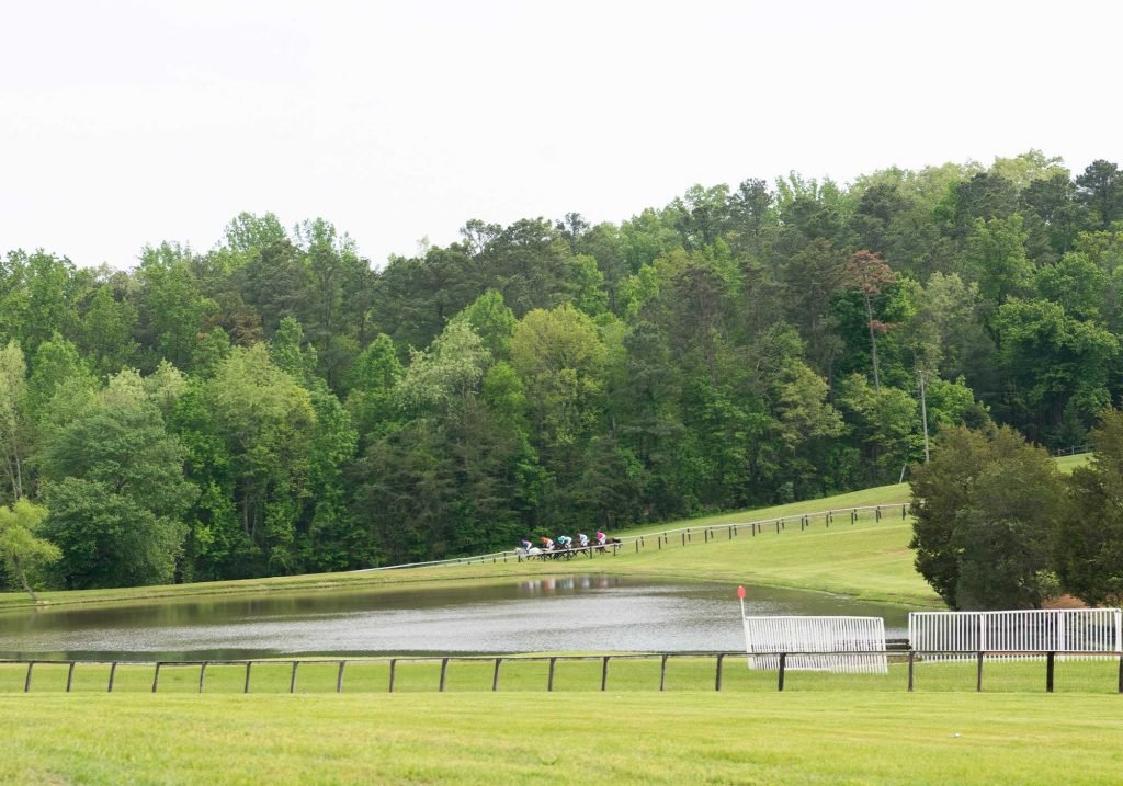 Horse racing at Foxfield races in Charlottesville