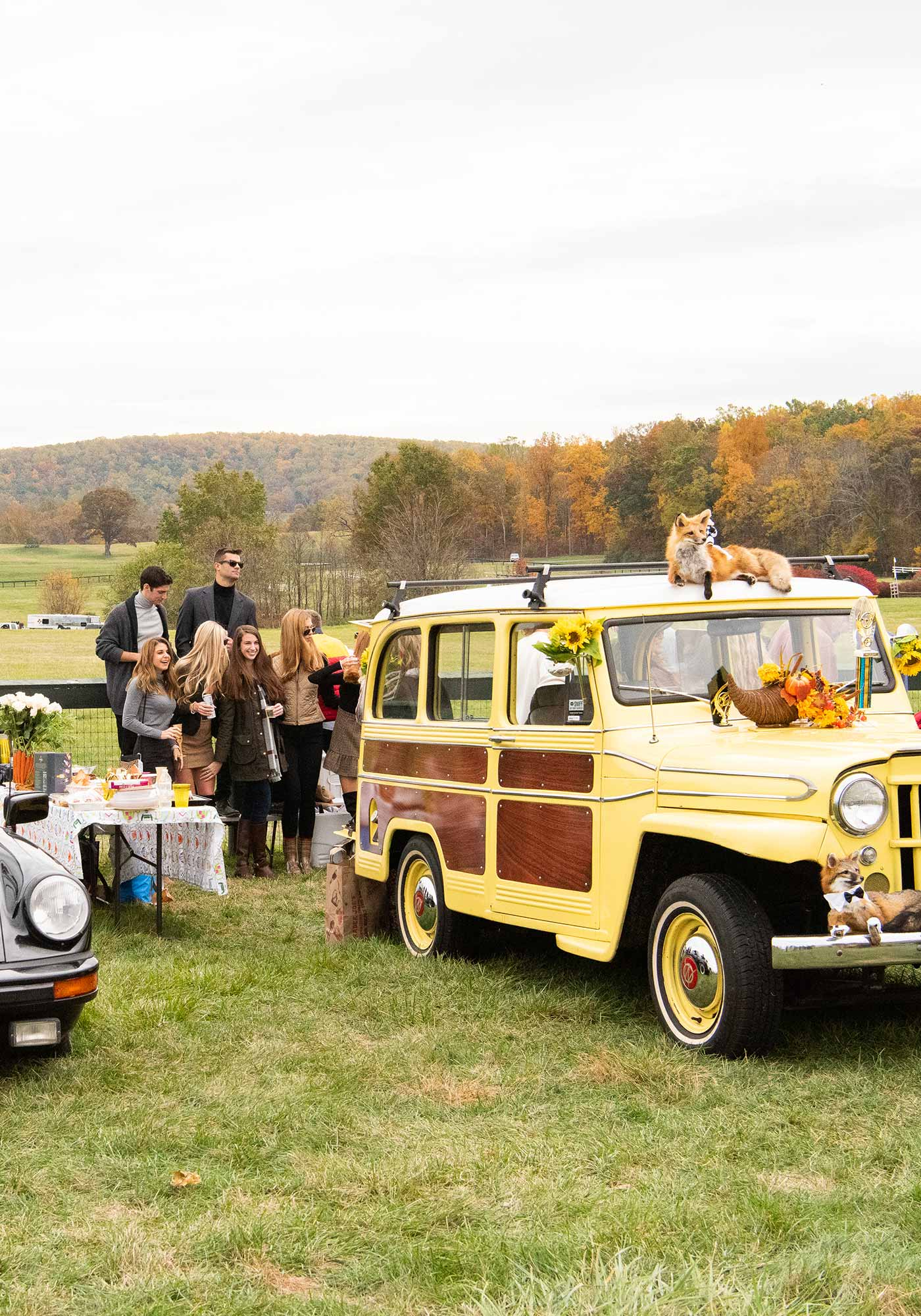 Virginia Gold Cup car, Image: © Wine & Country Life