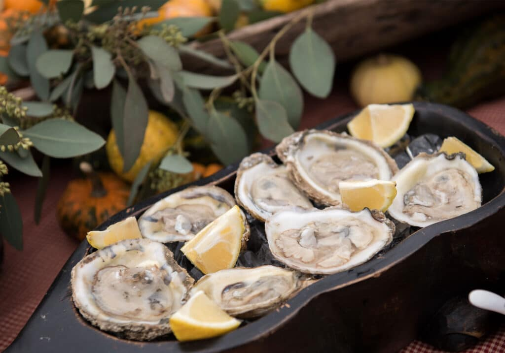 Montpelier Hunt Races Oysters, Image: © Wine & Country Life
