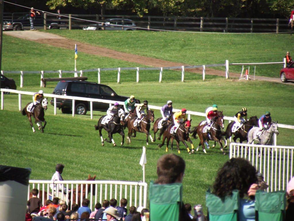 Horses and spectators at Morven Park in Leesburg